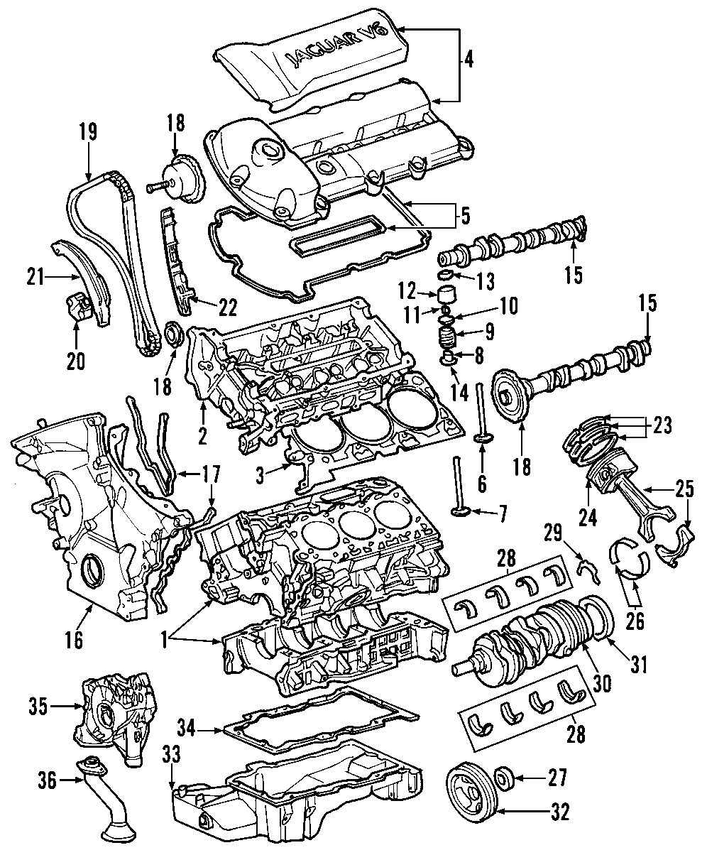 Jaguar X-type Engine Valve Cover  Valve Cover  Right  3 0 Liter